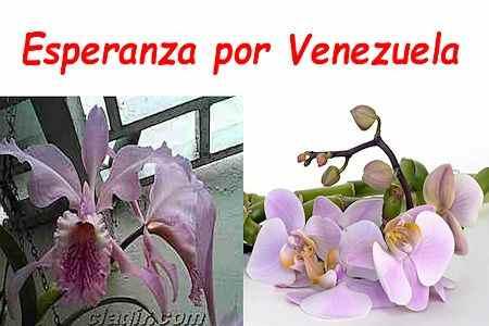 Esperanza por Venezuela 1