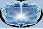usa tu cerebro para mejorar