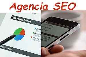 Agencia SEO para una empresa virtual